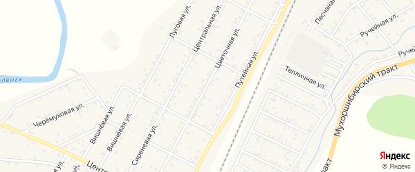 Цветочная улица на карте ДНП Нижний Саянтуй с номерами домов