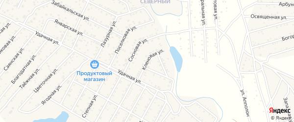 Улица Кленовая квартал Северный на карте села Сужа с номерами домов