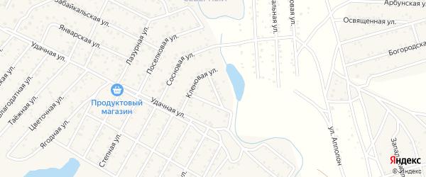 Улица Алтан-Булаг квартал Северный на карте села Сужа с номерами домов