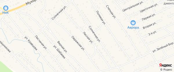 Лесная улица на карте села Нижнего Саянтуя с номерами домов