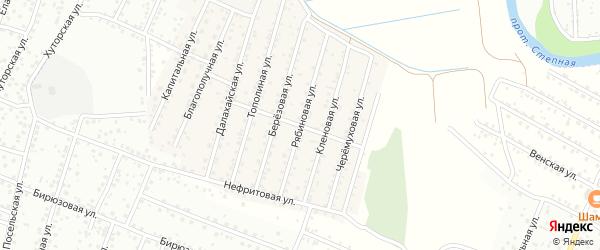 Рябиновая улица на карте села Поселье с номерами домов