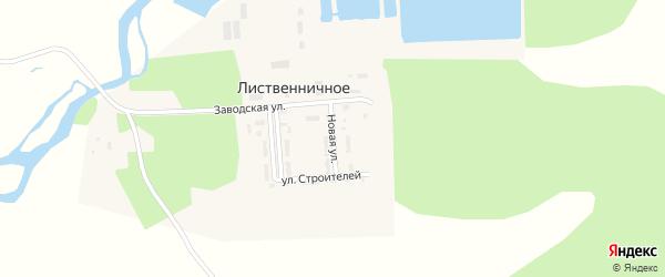 Новая улица на карте Лиственичного села с номерами домов
