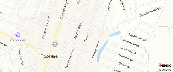 Новая улица на карте села Поселье с номерами домов