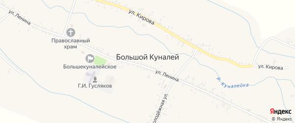Партизанская улица на карте села Большого Куналея с номерами домов