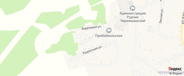Березовая улица на карте села Турунтаево с номерами домов