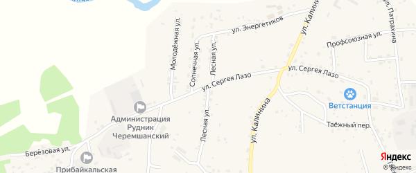Лесная улица на карте села Турунтаево с номерами домов