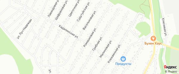 Ромашковая улица на карте Улан-Удэ с номерами домов