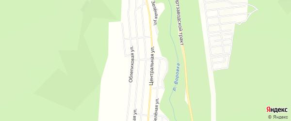 Дачное некоммерческое партнерство ДНТ Ручеек на карте Николаевского поселка с номерами домов