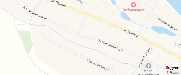 Кооперативная улица на карте села Малого Куналея с номерами домов