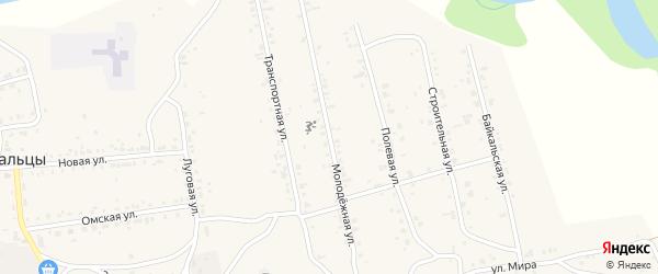 Молодежная улица на карте поселка Нижние Тальцы с номерами домов