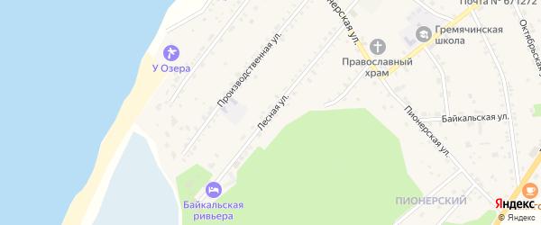 Лесная улица на карте села Гремячинска с номерами домов