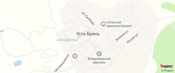 Дорожная улица на карте села Усть-Брянь с номерами домов