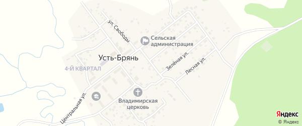 Первомайский переулок на карте села Усть-Брянь с номерами домов
