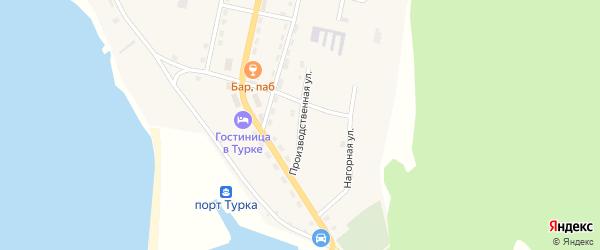 Производственная улица на карте села Турки с номерами домов