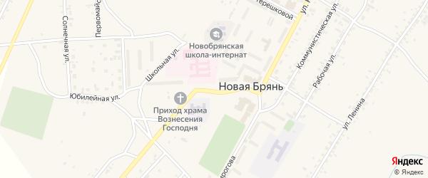 Октябрьская улица на карте села Новой Бряни с номерами домов
