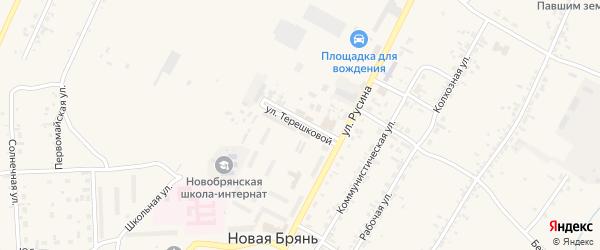 Улица Терешковой на карте села Новой Бряни с номерами домов