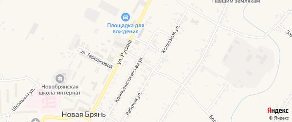 Больничный переулок на карте села Новой Бряни с номерами домов