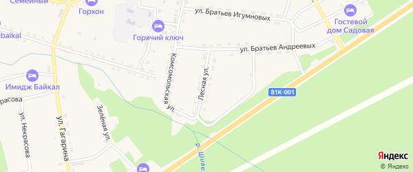 Лесная улица на карте села Горячинска с номерами домов