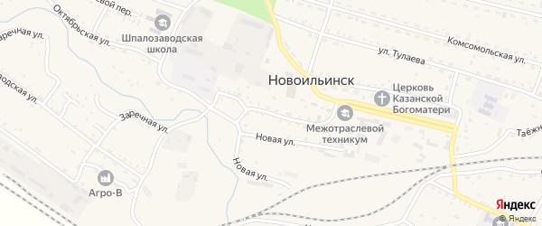 Советская улица на карте села Новоильинска с номерами домов