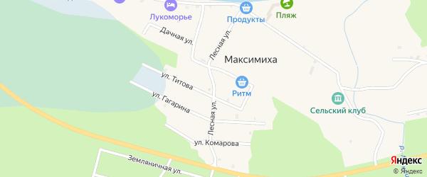 Лесная улица на карте села Максимихи с номерами домов