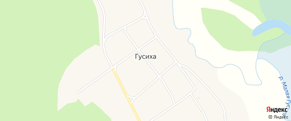 Школьная улица на карте села Гусихи с номерами домов