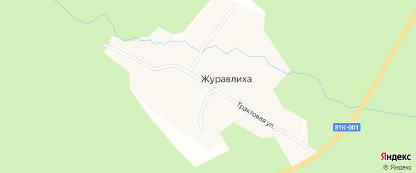 Трактовая улица на карте поселка Журавлихи с номерами домов