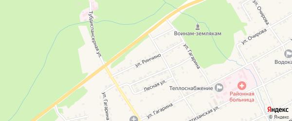 Улица Ринчино на карте села Баргузина с номерами домов