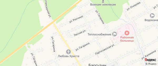 Лесная улица на карте села Баргузина с номерами домов
