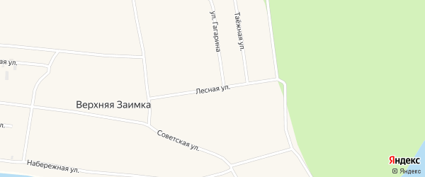 Лесная улица на карте села Верхней Заимки с номерами домов