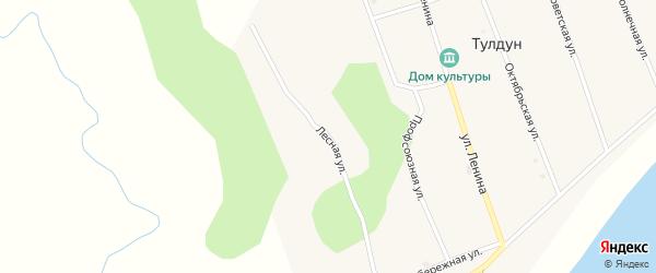 Лесная улица на карте поселка Тулдуна с номерами домов