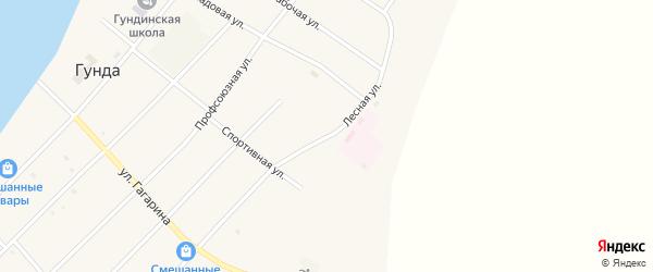 Лесная улица на карте поселка Гунда с номерами домов