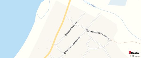 Профсоюзная улица на карте села Исинги с номерами домов