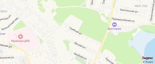 Грибная улица на карте поселка Таксимо с номерами домов