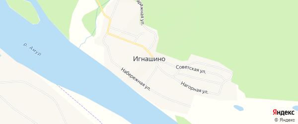 Карта села Игнашино в Амурской области с улицами и номерами домов