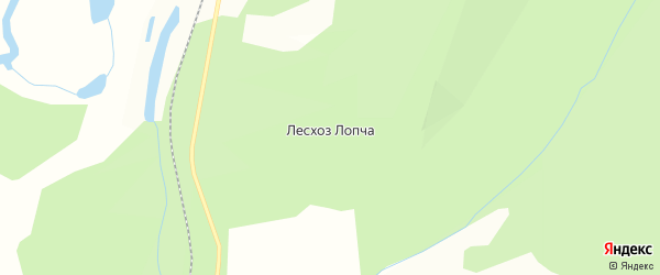 Карта поселка Лесхоза города Благовещенска в Амурской области с улицами и номерами домов