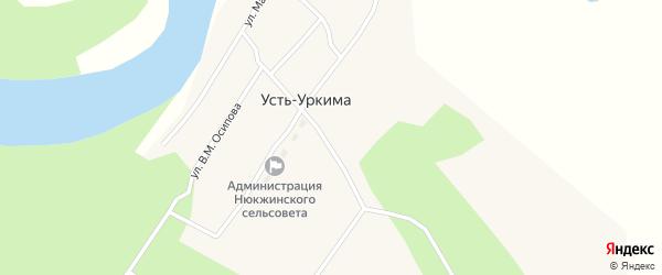 Лесная улица на карте села Усть-Уркимы с номерами домов