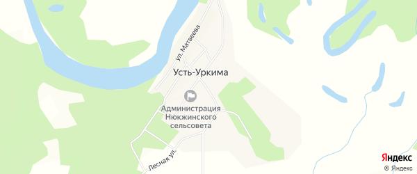 Карта села Усть-Уркимы в Амурской области с улицами и номерами домов