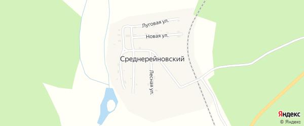 Луговая улица на карте Среднерейновского поселка с номерами домов