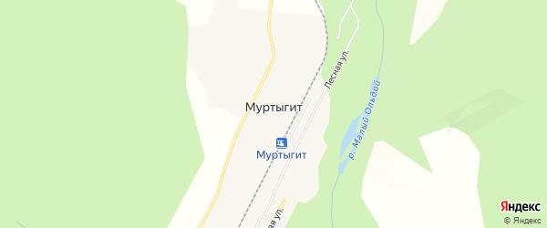 Карта поселка Муртыгита в Амурской области с улицами и номерами домов