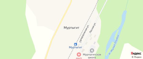 Придорожная улица на карте поселка Муртыгита с номерами домов