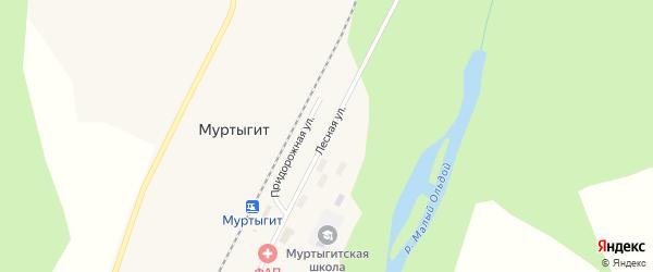 Лесная улица на карте поселка Муртыгита с номерами домов