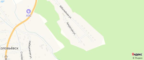 Амурская улица на карте села Соловьевск с номерами домов
