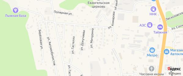 Улица Мичурина на карте Тынды с номерами домов
