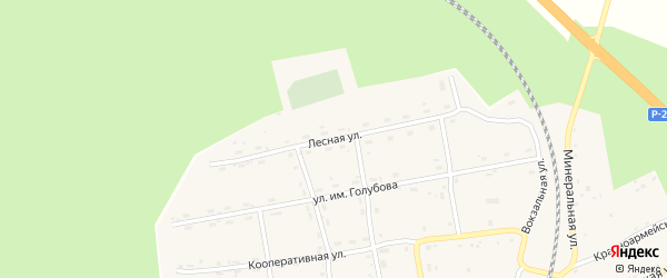 Лесная улица на карте села Гонжи с номерами домов
