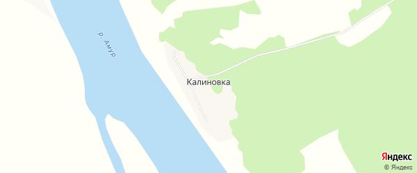 Карта села Калиновки в Амурской области с улицами и номерами домов