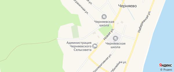 Мухинская улица на карте села Черняево с номерами домов