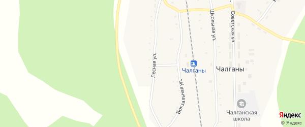 Лесная улица на карте села Чалганы с номерами домов