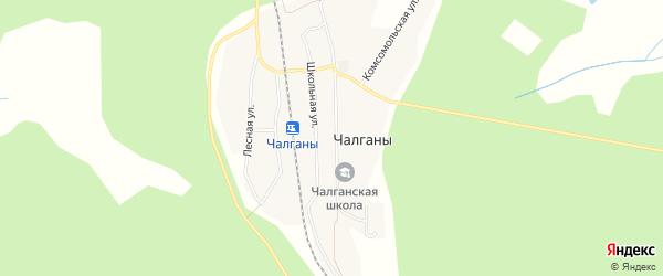 Карта села Чалганы в Амурской области с улицами и номерами домов