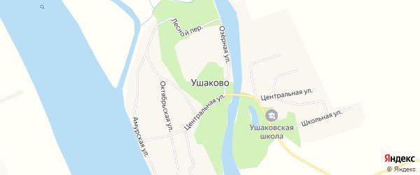 Карта села Ушаково в Амурской области с улицами и номерами домов