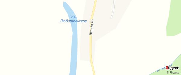 Лесная улица на карте села Нововоскресеновки с номерами домов